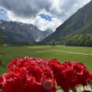 Hotel Plesnik - Logar Valley