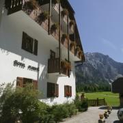 Hotel Plesnik -Logarska dolina